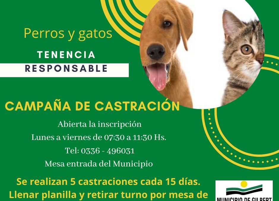 """CAMPAÑA DE CASTRACIÓN """"TENENCIA RESPONSABLE DE PERROS Y GATOS"""""""